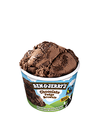 Chocolate Fudge Brownie Original Ice Cream Mini-kelimky
